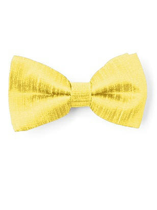 Boy's Clip Bow Tie in Dupioni