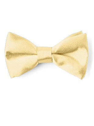 Boy's Matte Satin Clip Bow Tie