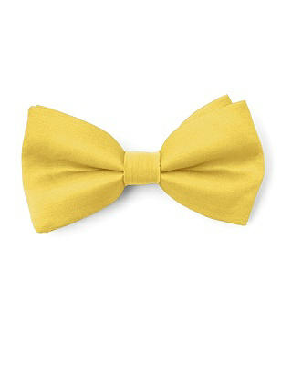 Boy's Clip Bow Tie in Peau de Soie