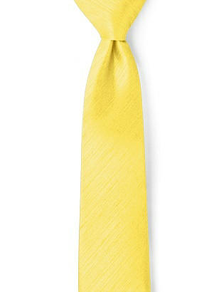 Men's Neck Ties in Dupioni