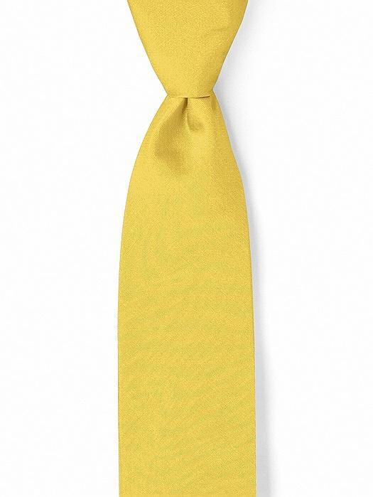 """Peau de Soie Boy's 50"""" Necktie by After Six"""