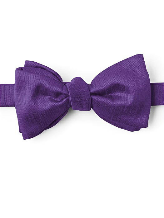 Dupioni Bow Ties by After Six